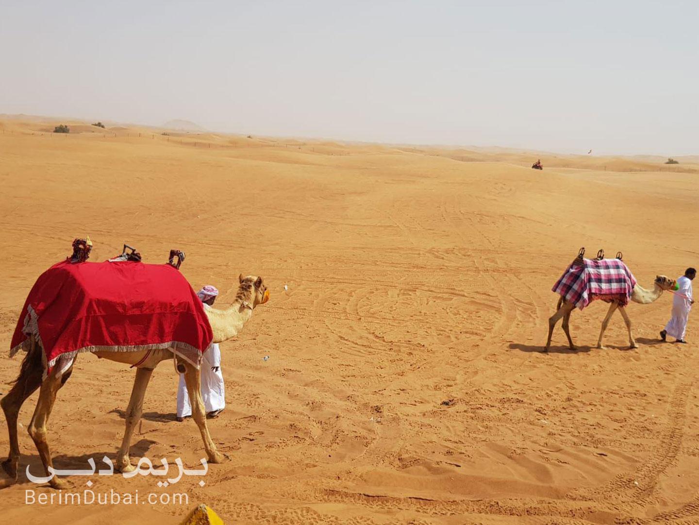 سافاری صحرا دبی با ترانسفر